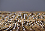 Rural landscape, Montana