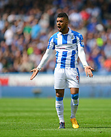 Huddersfield Town's Elias Kachunga<br /> <br /> Photographer Chris Vaughan/CameraSport<br /> <br /> The EFL Sky Bet Championship Play-Off Semi Final First Leg - Huddersfield Town v Sheffield Wednesday - Saturday 13th May 2017 - The John Smith's Stadium - Huddersfield<br /> <br /> World Copyright &copy; 2017 CameraSport. All rights reserved. 43 Linden Ave. Countesthorpe. Leicester. England. LE8 5PG - Tel: +44 (0) 116 277 4147 - admin@camerasport.com - www.camerasport.com