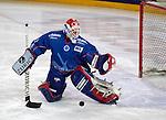 Eishockey, DEL, Deutsche Eishockey Liga 2003/2004 , 1.Bundesliga Arena Nuernberg (Germany) Nuernberg Ice Tigers - Iserlohn Roosters (7:2) Michael Fountain (Iserlohn) bei einer Parade