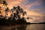 Sunset with Palm Trees, Les Tipaniers Hotel, Moorea, French Polynesia