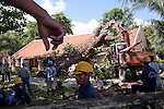 Construction workers pry a fallen tree from the rooftop of the Saigon Con Dao Resort on Con Son Island, part of the Con Dao Islands.The 16 mountainous islands and islets are situated about 143 miles southeast of Ho Chi Minh City in Vietnam, in the South China. Photo taken Wednesday, May 4, 2010...Kevin German / LUCEO For the New York Times