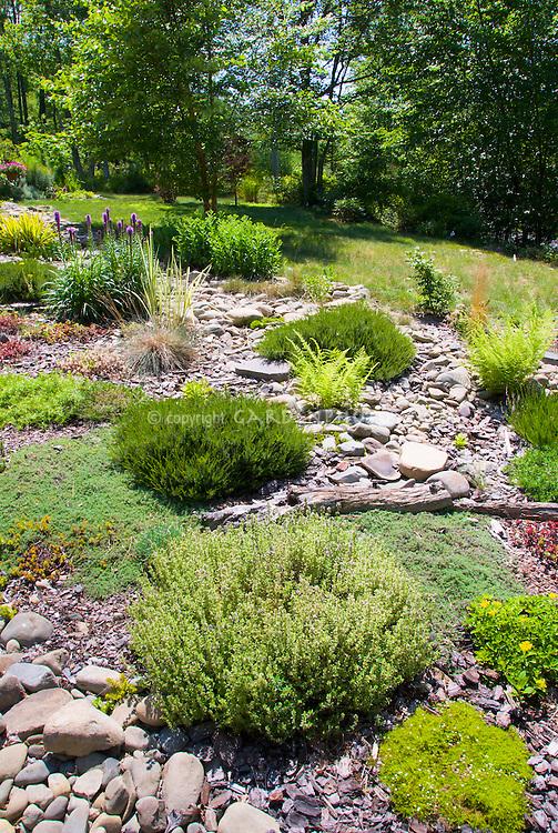 Landscaping A Sunny Hillside : Sloped garden in sun plant flower stock photography gardenphotos