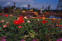 Vancouver, BC, British Columbia, Canada - Flowers blooming in Urban Flower Garden with Windmill and Pond, Summer