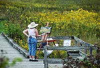 Plein air artist painting a field of flowers..