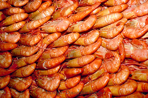 Shrimp layered for sale at market, fresh and no oil, healthy