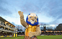 Bath Rugby mascot Maximus at half-time. Aviva Premiership match, between Bath Rugby and Northampton Saints on December 5, 2015 at the Recreation Ground in Bath, England. Photo by: Patrick Khachfe / Onside Images