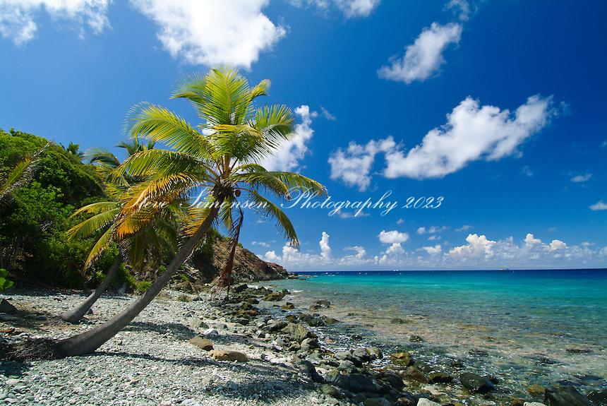 Devers Bay<br /> South Shore<br /> St. John<br /> U.S. Virgin Islands