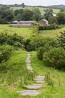 Hadrian's Wall Footpath between Newtown and Walton,   Cumbria, England, UK.