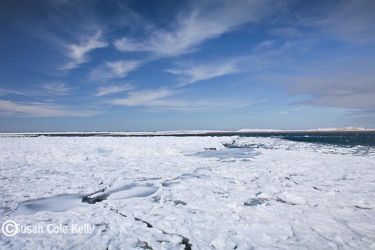 Ice floes at Bass Hole, Yarmouth, Cape Cod, MA, USA