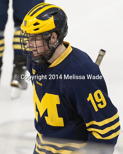 Dylan Larkin (Michigan - 19) - The Boston College Eagles defeated the visiting University of Michigan Wolverines 5-1 (EN) on Saturday, December 13, 2014, at Kelley Rink in Conte Forum in Chestnut Hill, Massachusetts.
