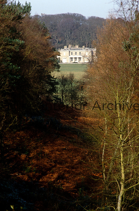 The symmetrical outline of a Palladian villa is glimpsed through the trees