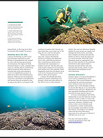 Story in Scuba Diver Ocean Planet on NGO Concern Worldwide's efforts to rehabilitate reefs after Typhoon Haiyan in the Philippines. Healthy reefs are critical for the livelihoods of the local fishermen.