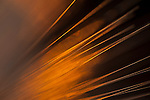 Fiber Optics close-up abstract