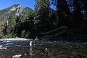 WA09158-00...WASHINGTON - Fly fishing on the Middle Fork of the Snoqualme River near North Bend. (MR# J9)