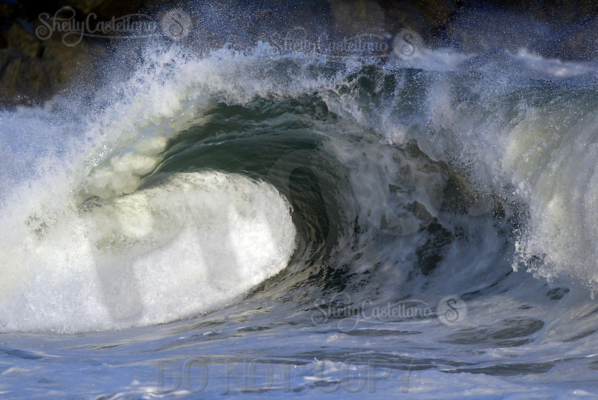 28 June 2005: Perfect barrell wave shaped at the South facing beach at The Wedge in Newport Beach gets their first large swell of the summer. Body Surfers, Boogie Boarders, sponge riders, skim boarders and surfers caught waves in size from 10-20' feet today at this famous beach in Southern California. Water and Air temperature were 65' with a small offshore wind in the Pacific Ocean.