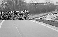 peloton taking the whole wide road<br /> <br /> 69th Kuurne-Brussel-Kuurne 2017 (1.HC)