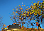 The waxing moon still lingered after sunrise  on Oct. 15th.  above the Elk View Cemetery..Photo by Sam Verbulecz