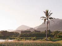 Kualoa Regional Park, O'Ahu, Hawai?i