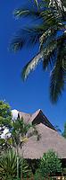 Afrique/Afrique de l'Est/Tanzanie/Zanzibar/Ile Unguja/Bwejuu: Hotel Breezes Beach Club détail des toits et palmiers