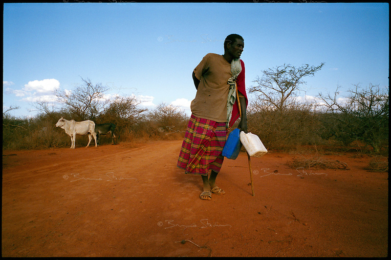 near Wajid, Somalia, March 2006.Abdul Isaac, 43, is one of the few herdsmen still in the bush with the remnants of his cattle. More than 4 millions people are affected in the region by the worst drought in man's memory. The livestock is decimated and a whole lifestyle threatened.