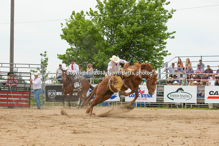 RAM Rodeo action, Milverton, Ontario, Canada, June, 2013<br /> Photo by Norm Betts <br /> tel:416 460 8743<br /> &copy;2013 Norm Betts, photog<br /> normbetts@canadianphotographer.com