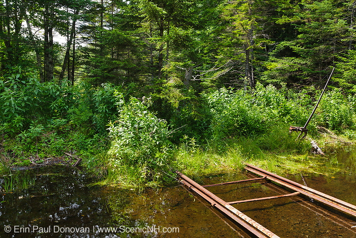 A harp switch stand along and abandoned spur line of the East Branch & Lincoln logging Railroad (1893-1948) deep in the Pemigewasset Wilderness of the New Hampshire White Mountains USA.