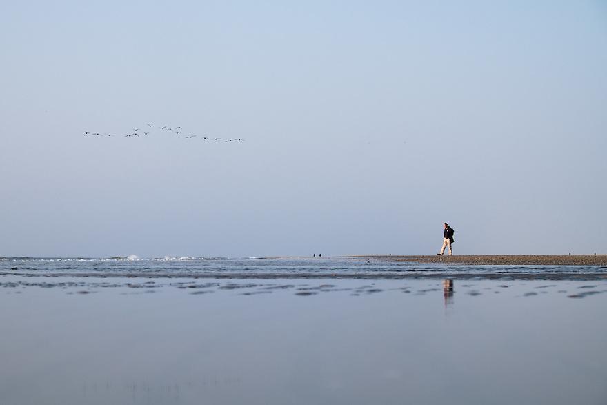 Nederland, Camperduin,  17 maart 2015<br /> Strand aan de voet van de hondsbosse zeewering bij Camperduin.  Een eenzame wandelaar geniet van de zee.<br /> Foto: (c) Michiel Wijnbergh