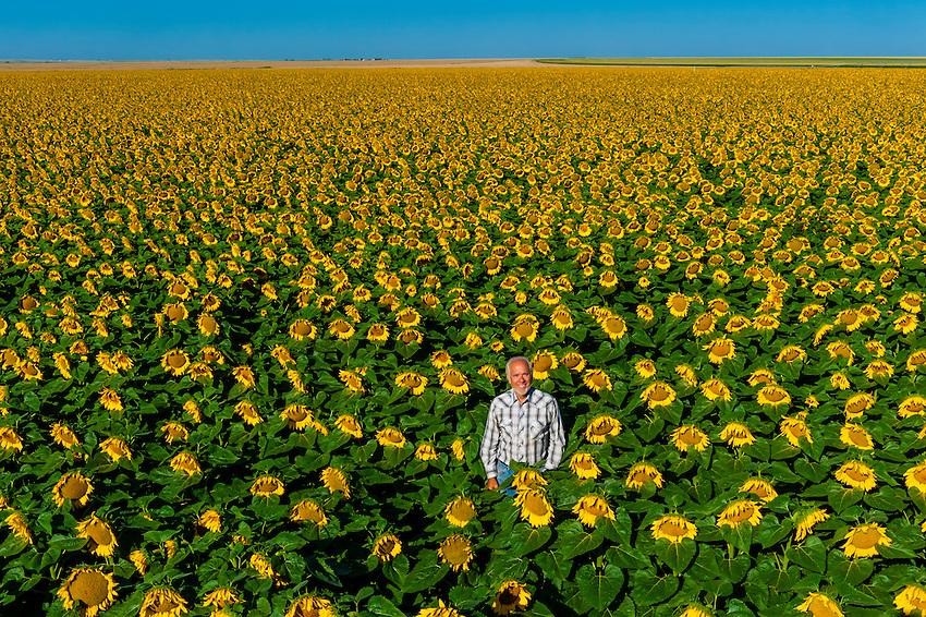 Goodland (KS) United States  City new picture : ... Sons Farm, near Goodland, Western Kansas USA. | Blaine Harrington III