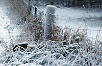 Severe frosts cover farmland, Queenstown, New Zealand, Monday, July 09, 2012. Credit:SNPA / Dianne Manson