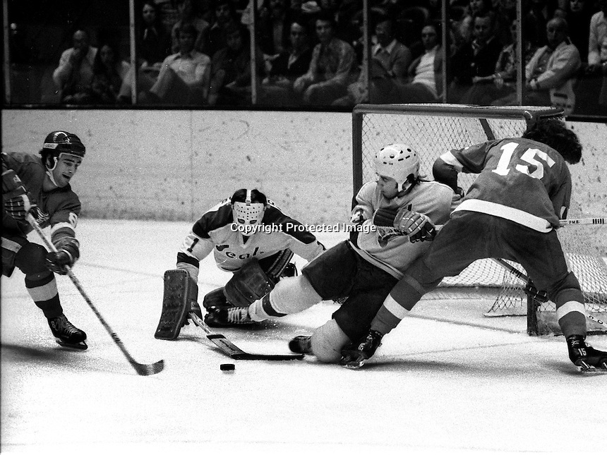 California Golden Seal Ted McAneeley and goalie Marv Edwards try to hold off Detroit Red Wings Guy Charron and Bill Hogaboam. (1974 photo/Ron Riesterer)