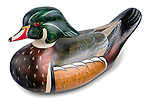 wood duck decoy