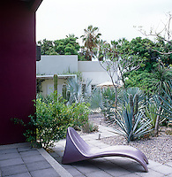 Cactus and agave thrive on the patio and form a vibrant colour contrast with the pink walls of the covered terrace
