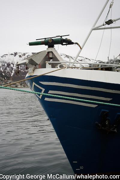 Norwegian whaling ship at dock in Tromso Harbour, Arctic Norway