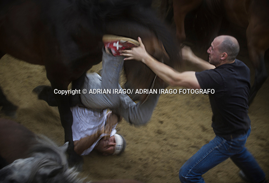 A &quot;aloitador&quot; falls horse during the Rapa das Bestas in Sabucedo (Galicia) on July 3, 2011. When summertime comes in Galicia (Northwest of Spain), the use of &ldquo;curro&rdquo; begins. A ritual which preserves the free and wild spirit of this region which has remained traditionally tied to nature.<br />