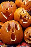 Halloween Funny Faced Pumpkins