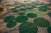 Irrigated circular fields dot the arid landscape