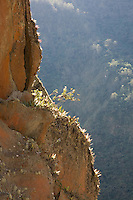 A cliff above the Interoceanic Highway near Ollachea