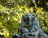 Low angle view of the statue called Lion de menagerie baillant, un chien entre les pattes (menagerie lion yawning with a dog in his legs), created by Henri Jacquemart circa 1857 and located at the bottom of the Labyrinth in the Jardin des Plantes, Paris, 5th arrondissement, France. This statue by Henri Jacquemart was probably inspired by the famous menagerie lion Woira, a Senegalese lion who was inseparable from his dog companion. Founded in 1626 by Guy de La Brosse, Louis XIII's physician, the Jardin des Plantes, originally known as the Jardin du Roi, opened to the public in 1640. It became the Museum National d'Histoire Naturelle in 1793 during the French Revolution.