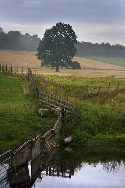 An English country scene with a trees, farmland and a river