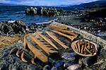 DOH; Who were the first Americans, Artifacts, 7000 R.C.D. from tunnel site at Beagle Channel, Tiera del Fuego, Chile, harpoons, bird-bone awles, tubular beads, mussel shells