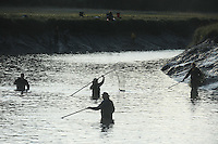 Dipnetters try their luck for red salmon on Fish Creek near Wasilla, Alaska.