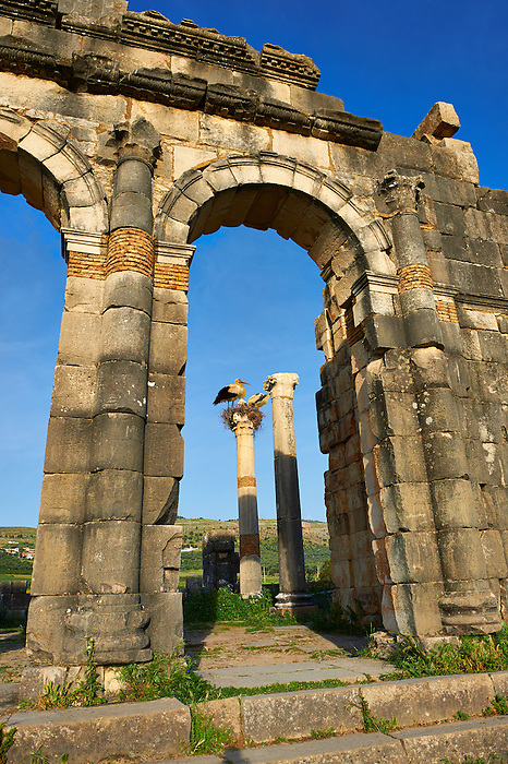 Exterior of the Basilica at Volubilis.  Completed during the reign of Macrinus in the early 3rd century, it is one of the finest Roman basilicas in Africa and is probably modelled on the one at Leptis Magna in Libya, Volubilis Archaeological Site, near Meknes, Morocco