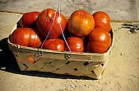 FRUITS - VEGETABLES<br /> Basket of Tomatoes<br /> Alabama