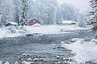 Red barn, snowstorm, Hoback River, Jackson Hole, Wyoming