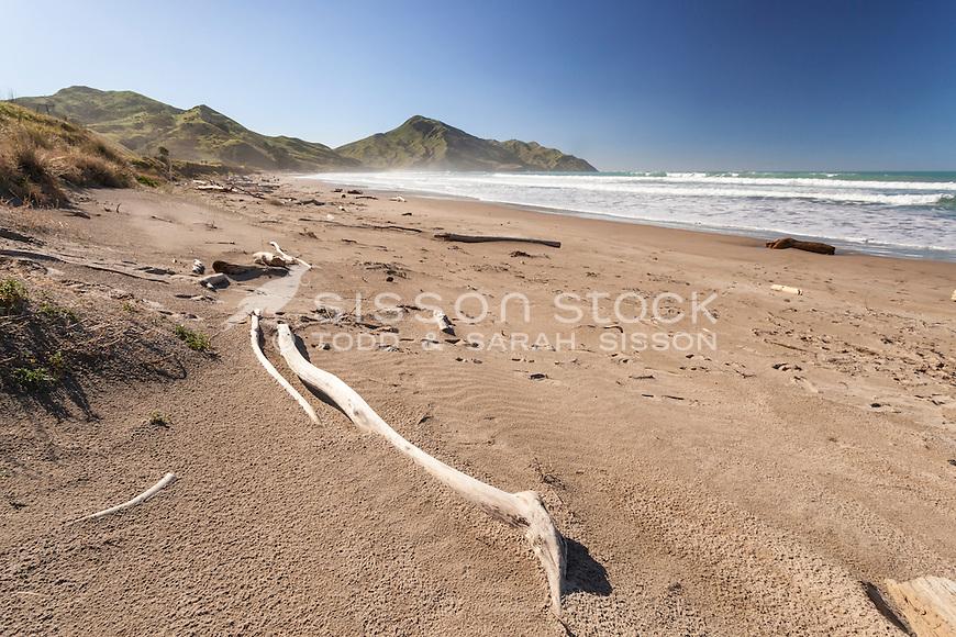 Surf & sand, Kaiaua Bay, East Cape (near Tolaga Bay). North Island New Zealand.