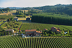 Alloro Winery, Chehalem Mountain AVA, Willamette Valley, Oregon