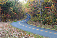 A scenic roadway or byway on the Blue Ridge Parkway in Nelson County, VA. Photo/Andrew Shurtleff
