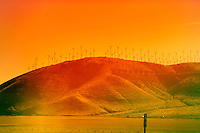 Tehachapi, California, November 16, 2010 - A view of the Tehachapi Wind Farm, a collection of about 5,000 wind turbines operated by over a dozen private companies. It is the second largest collection of wind generators in the world, however it ranks first in terms of output, collectively producing about 800 million kilowatt-hours of electricity. California is leading the nation in renewable energy. In 2002, California established its Renewable Portfolio Standard Program, with the goal of increasing the percentage of renewable energy in the state's electricity mix to 20 percent by 2017. The 2003 Integrated Energy Policy Report recommended accelerating that goal to 20 percent by 2010, and the 2004 Energy Report Update further recommended increasing the target to 33 percent by 2020. In 2006 under Senate Bill 107, California's Renewables Portfolio Standard (RPS) was created and codified the 20 percent goal. The RPS program requires electric utilities and providers to increase procurement from eligible renewable energy resources by at least 1 percent of their retail sales annually, until they reach 20% by 2010. On November 17, 2008, Governor Arnold Schwarzenegger signed Executive Order S-14-08 requiring that California utilities reach the 33 percent renewables goal by 2020..