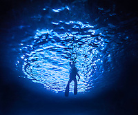 The entrance to the cave is bwlow the surface of the water so the only light that gets into the cave is through this entrance. (Photo by Underwater Photographer Matt Considine)