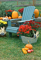 Fall roadside sale, pumpkins, indian corn, and mums, Westminster Vermont